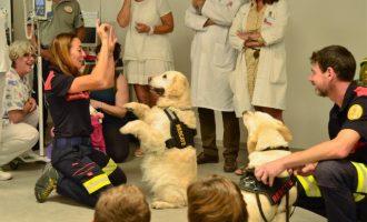 La unitat canina de Bombers i Bombers pel món visiten el Clínic per a fomentar l'aprenentatge de xiquets ingressats