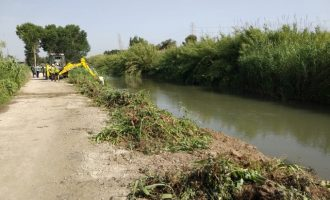 Manises finalitza el segon tram de neteja del Túria