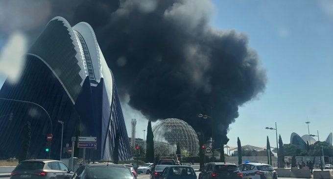Un incendio en l'Oceanogràfic de València obliga a evacuar las instalaciones