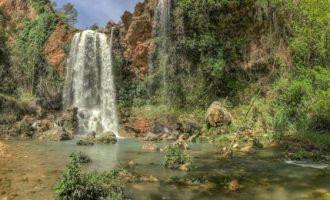 """Gandia ens descobreix els paisatges naturals més pròxims amb l'exposició """"Natura valenciana"""""""