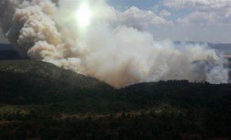 Extingit l'incendi de Beneixama que podria haver sigut intencionat