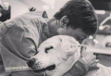 """Jorge Llinás, el 'Cavadas dels animals': """"Mai faig res que no li faria al meu gos"""""""