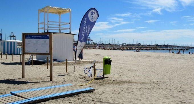 La platja canina de Pinedo serà l'escenari el dia 29 d'una passarel·la de gossos benèfica
