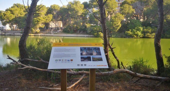 La nova ruta accessible de la Devesa estrena nova cartelleria informativa en castellà, valencià i anglés
