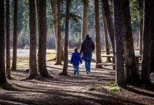 """El Consell apuesta por """"una vida digna"""" para todas las diversidades familiares"""