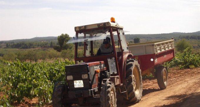 """Una 'tractorada' recorrerà Requena contra l'""""amenaça de tremenda baixada de preus"""" del raïm cava"""