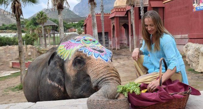 La elefanta Petita celebra su 47 cumpleaños con una gran batalla de agua y colores en Terra Natura Benidorm