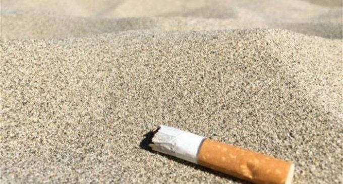 """Colomer creu que les platges sense fum són """"el futur"""" i no afectarien el turisme: """"És un avantatge competitiu"""""""