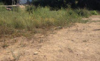 Continua la neteja del riu Túria al seu pas per Manises
