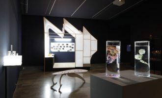 El Centre del Carme reuneix artistes, investigadores i escriptores en unes jornades sobre art, biologia i tecnologia