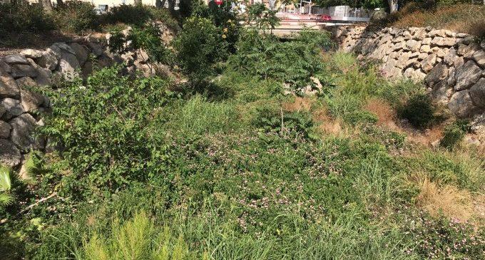 Massamagrell exigeix a la Confederació Hidrogràfica del Xúquer que netege i elimine la mala herba del llit del Barranquet
