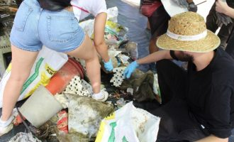 SIGFITO celebra la reducción del vertido de residuos y envases agrarios en la Albufera