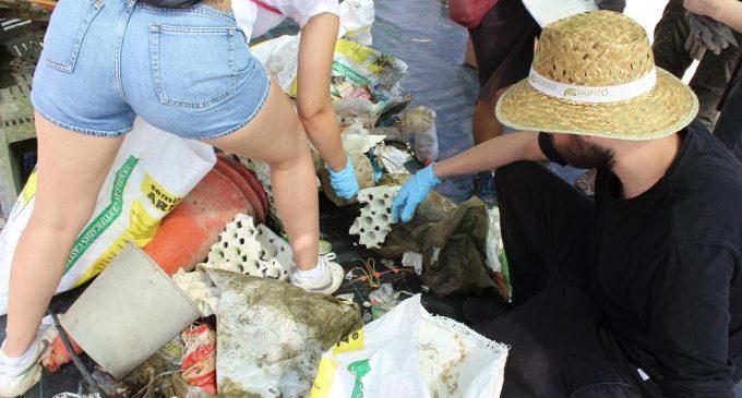 SIGFITO celebra la reducció de l'abocament de residus i envasos agraris en l'Albufera