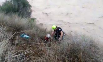 Rescaten a dos gossos a Albaida i Xàtiva que havien quedat atrapats per les riuades