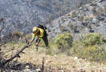 Llíria promou el voluntariat ambiental per a previndre els incendis