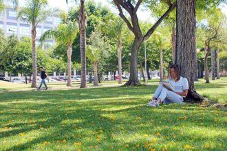 La UPV, entre les cent millors universitats del món en l'ensenyament de ciències tècniques