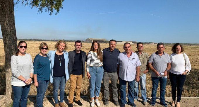 Mireia Mollà recolza el nou pla municipal de Catarroja per a retirar la palla de l'arròs