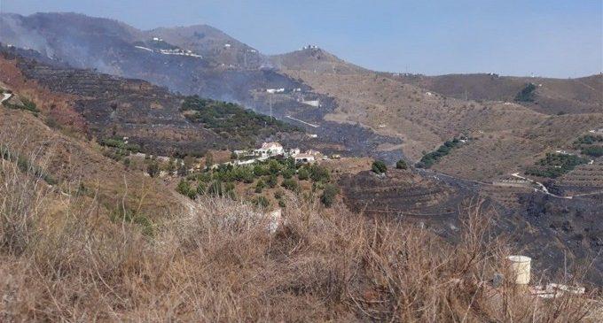 Emergencia Climática destina 589.000 euros al voluntariado ambiental en materia de prevención de incendios forestales