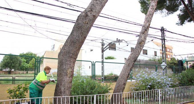 Picassent actua contra la processionària als parcs i zones verdes