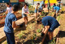 El colegio municipal de Benimaclet, segundo premio estatal de huertos ecológicos educativos