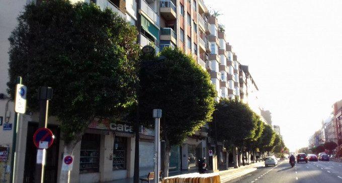 S'inicia la poda dels 356 arbres de l'avinguda del Port