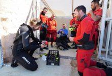 Personal de la UME se entrena con leones marinos para el rescate en entorno acuático