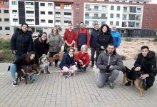 Almàssera ofrece un curso sobre educación canina