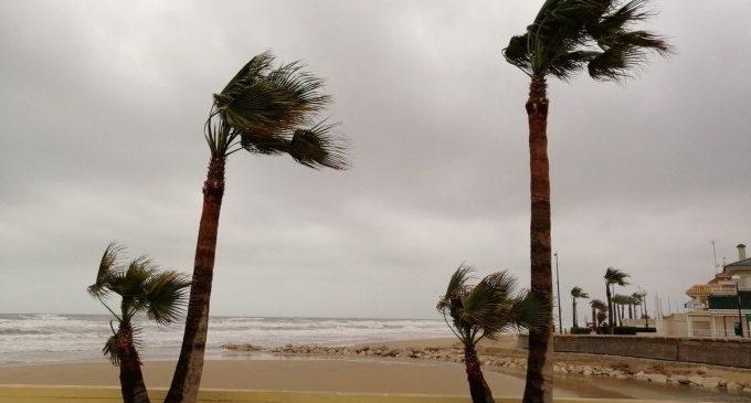 Fortes ratxes de vent a València quesuperen els 70 quilòmetres per hora