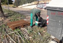 Las brigadas de desbroce del Consell Agrari realizan una recogida selectiva de residuos del campo