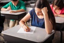 La Conselleria d'Educació activa el pla MULAN per impartir classes des de casa