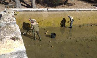 Se retiran las carpas exóticas a las balsas de la Murta