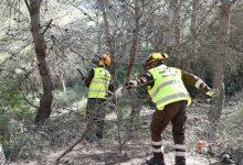 Divalterra publica la convocatoria de empleo de 47 plazas de brigadistas forestales, un auditor interno y un técnico financiero