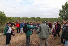 Decenes de voluntaris participen en una nova jornada de clareig en La Vallesa