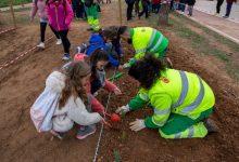 Los escolares de Mislata plantan 600 árboles en La Canaleta