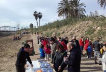 Alzira celebrarà enguany la Festa de l'Arbre al Nou Mirador del Xúquer