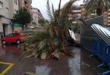 Gandia afronta amb tots els efectius disponibles el temporal de vent i mar