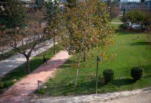 València té cinc milions de metres quadrats de zones verdes