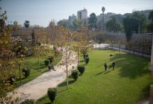 El Rialto aposta per la transformació de València en una ciutat verda