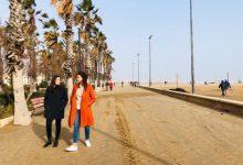 València pedirá la declaración del litoral como zona catastrófica