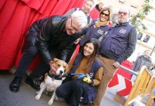 València celebra la festivitat de Sant Antoni Abat