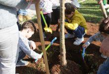 Un centenar de vecinos y vecinas de Alaquàs se citan el Día del Árbol