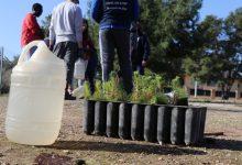 Llíria se suma al Dia de l'Arbre amb més de 800 plantacions