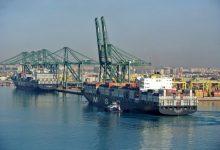 Salpa del Port de València el vaixell en el qual es va detectar la soca índia en donar-se per extingit el brot