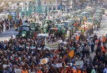 El PP plantea una declaración institucional con reivindicaciones agrarias y critica que el Botànic no firme