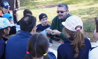 400 escolares participan en el Día del Árbol en Carcaixent