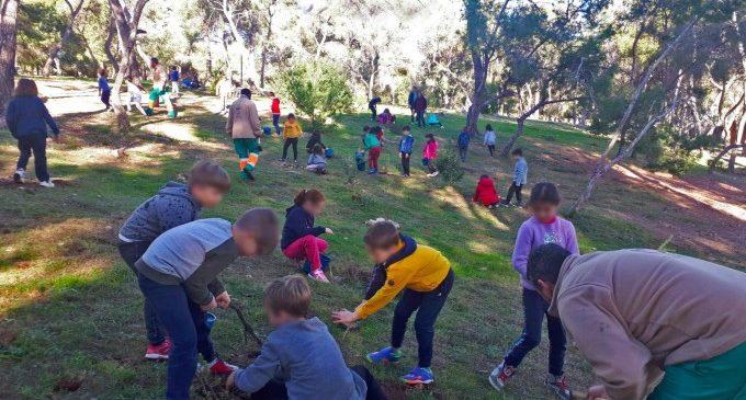 Paterna tindrà 1.200 nous arbres gràcies a les reforestacions d'escolars