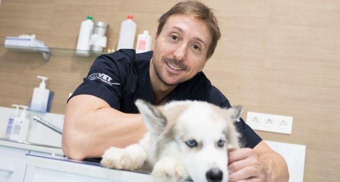 El veterinari Jorge Llinás aclareix que les mascotes no transmeten el coronavirus