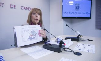 L'Ajuntament de Gandia i l'empresa de control de plagues inicien una campanya contra el mosquit tigre