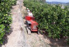 Alzira enceta la campanya de trituració de restes de poda