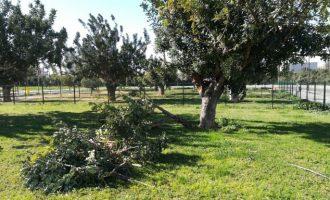 Paterna pone en marcha el dispositivo especial de emergencia ante las fuertes rachas de viento
